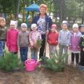 Акция «Посади дерево»
