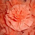 Мастер-класс «Цветы из салфеток»