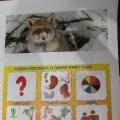 Конспект интегрированного занятия по речевому развитию и рисованию «Дикие животные зимой»