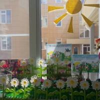 Огород на подоконнике «Во саду, ли в огороде»
