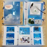 Лэпбук «Перелетные птицы»