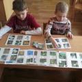 Дидактическая игра для детей старшего дошкольного возраста «Природа родного края»