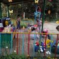 Организация деятельности детей старшего дошкольного возраста на прогулке в летний период