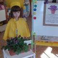 Детско-родительская научная конференция в детском саду