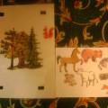 Дидактическая игра «Кто живёт в лесу?»