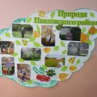 Оформление стенгазеты «Природа Павловского района»
