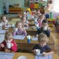 Организация работы по формированию культуры питания у детей старшего дошкольного возраста.
