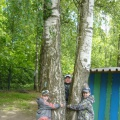 Фотоотчет о реализации проекта «Береза— символ России» в подготовительной группе