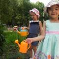 Летняя оздоровительная прогулка в детском саду