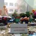 Фотоотчет об осенней выставке «Дары осени» в подготовительной группе