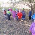 Краткосрочный проект для детей средней группы «Осеннее дерево»