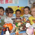 Фототчет о проведении выставки «Дары Осени»