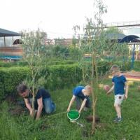 «Сказочная детская площадка». Оформление территории детского сада