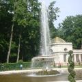 Город, где легко дышится, где любится, где живут мои самые любимые люди— Петергоф.