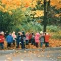 Конспект НОД-прогулки «Рассматривание осеннего дерева. Клен»