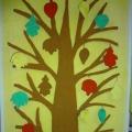 У нас в уголке природы «Чудо-Дерево» растёт