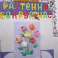 Тематическая выставка «Растения вокруг нас».