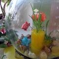 Новый дом для рыбок