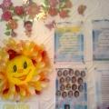 Оформление моей группы «Солнышко»