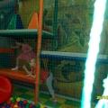 Спортивно-физкультурный лабиринт в нашем детском саду