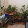 Мой методический кабинет