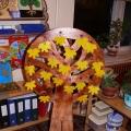 Дизайн-проект «Чудо-дерево»
