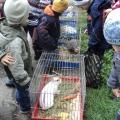 Экскурсия на станцию «Юных натуралистов»