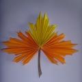 Мастер-класс «Кленовый лист» в технике оригами