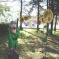 Фото территории детского сада.
