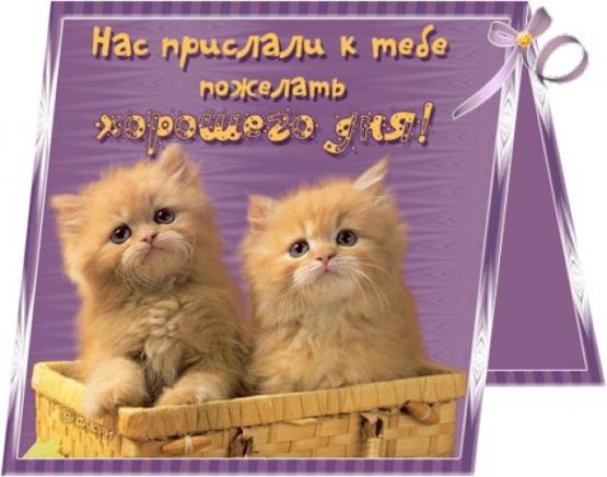 http://www.maaam.ru/upload/users/41b6bb1482c80498160d5d4cd12cf7f5.jpg.jpg