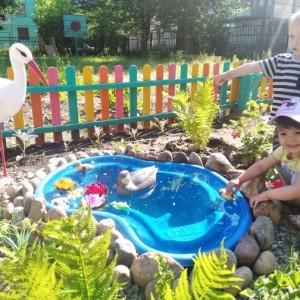 Фотоотчёт «Летняя прогулка малышей»